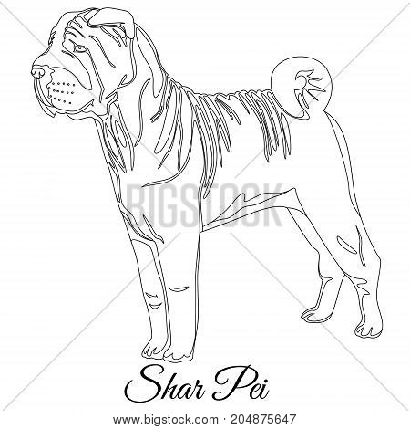 Chinese shar pei dog outline vector illustration