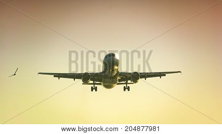 passenger plane taking off composition photography concept