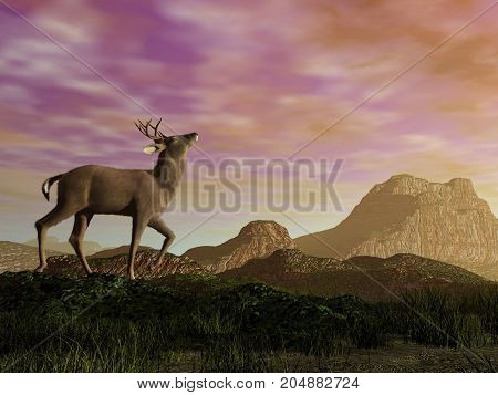 Buck in the mountain by sunset - 3D render