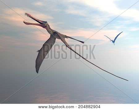 Anhanguera prehistoric birds flying upon the sea by sunset - 3D render