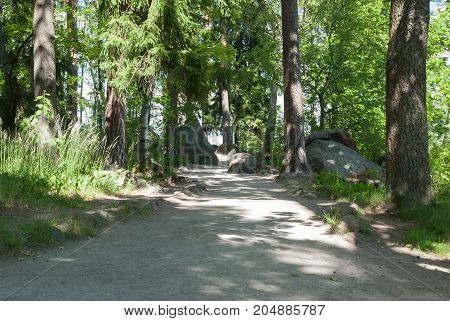 Empty walkways in a natural park on a sunny day