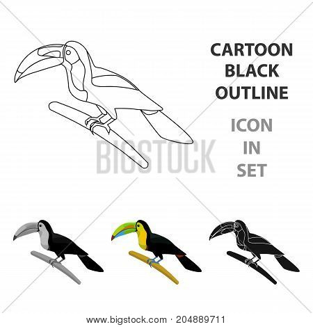 Mexican keel-billed toucan icon in cartoon style isolated on white background. Mexico country symbol vector illustration.
