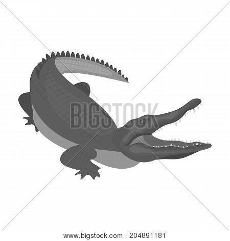 Crocodile, dangerous predator. Reptile, Nile crocodile single icon in monochrome style vector symbol stock illustration .