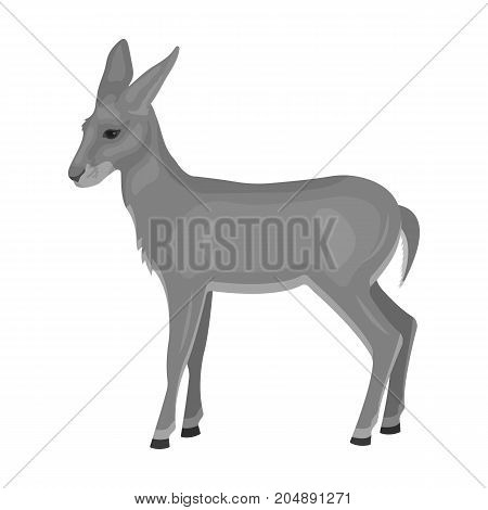 A young, wild antelope. A wild-footed animal of an antelope single icon in monochrome style vector symbol stock illustration .