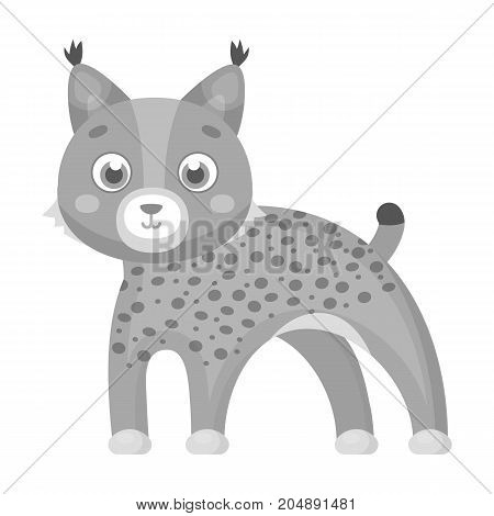 Lynx, single icon in monochrome style.Lynx, vector symbol stock illustration .
