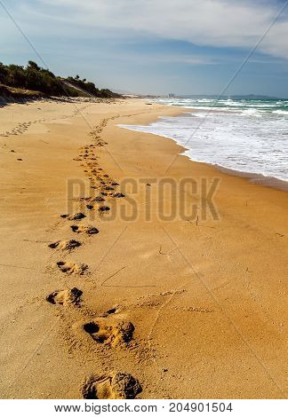 Beach, Wave And Footprints At Sunset