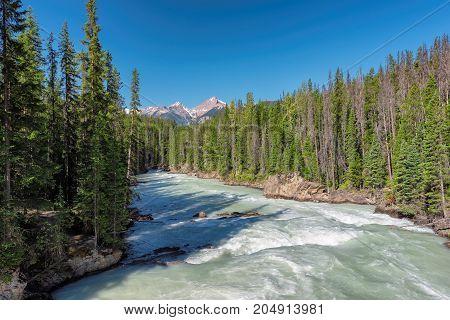 Beautiful view of mountain river in Canadian Rockies, Alberta, Canada.