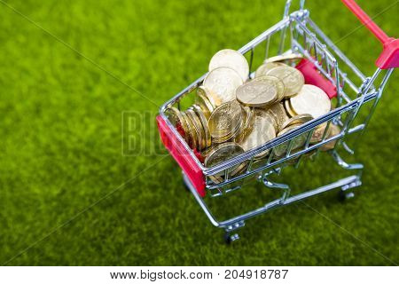 Shopping Trolley With Coins