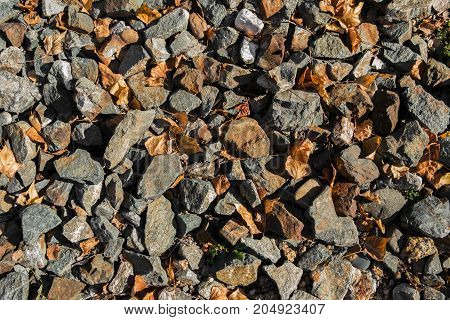 Stones and dry yellow leaves. Stone background. Stone texture and background