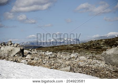 Snow Glade In The Stone Tundra