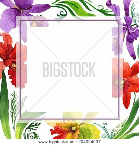 Wildflower orchid flower frame in a watercolor style. Full name of the plant: colorful orchid. Aquarelle wild flower for background, texture, wrapper pattern, frame or border.