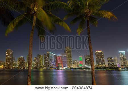 Miami skyline and bay adter sunset through two palm trees. Florida.