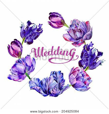 Wildflower tulip flower wreath in a watercolor style. Full name of the plant: purple tulip. Aquarelle wild flower for background, texture, wrapper pattern, frame or border.