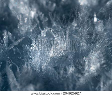 Macro Photo Of Snowflakes. Crystals Of Snow At Close-up.