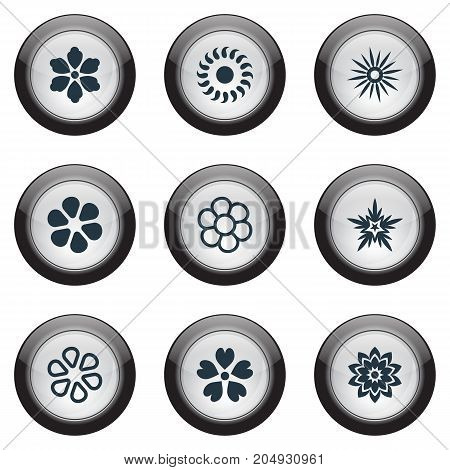 Elements Pattern, Jasmine, Marguerite And Other Synonyms Glory, Ornament And Flower.  Vector Illustration Set Of Simple Blossom Icons.