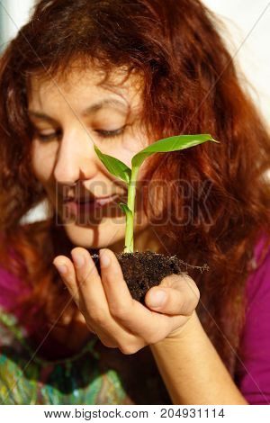 woman hand and plant. enviroment concept. Blur background