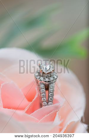 Close up of wedding ring on the pink rose