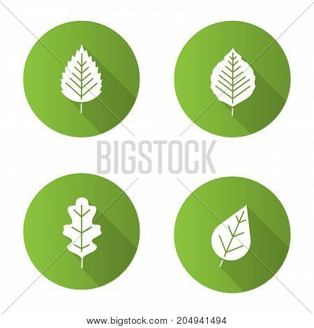 Leaves flat design long shadow glyph icons set. Poplar, birch, oak leaves. Vector silhouette illustration