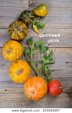 Composition of a different varieties and colors of pumpkins on on rustic wooden background , flat lay, top view with  inscription
