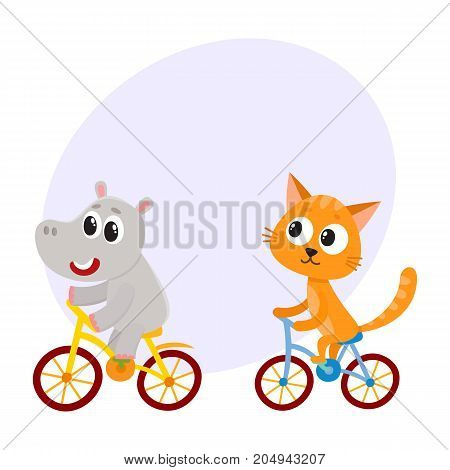 Cute little hippo and cat, kitten characters riding bicycles together, cartoon vector illustration with space for text. Baby hippo and cat, kitten animal characters riding bicycles, cycling