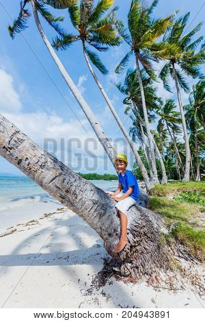 Young happy boy sits on a palm tree in a tropical beach