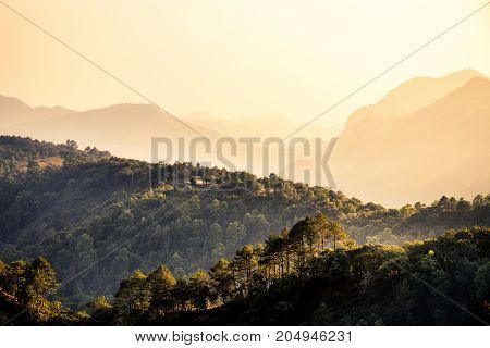 Nature travel concept: Misty summer for layer of tree and mountain hills with mist landscape with orange light in the morning time.