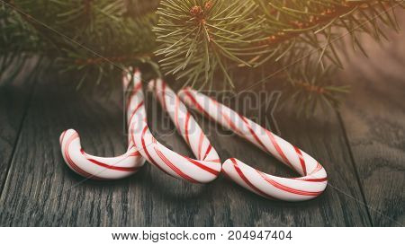 candy canes fir spruce twigs, on old table