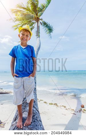 Young happy boy having fun on a palm tree in a tropical beach