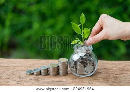 Hand holding coin putting into jar with growth sprout plant as financial investment concept.