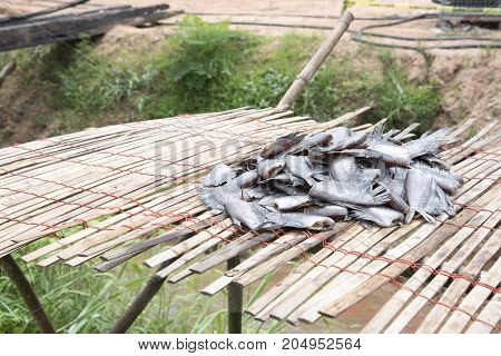 Many Dried Salted Fish Called