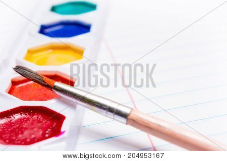 Brush and Bright colored watercolor paints. Back to school. Stationery.