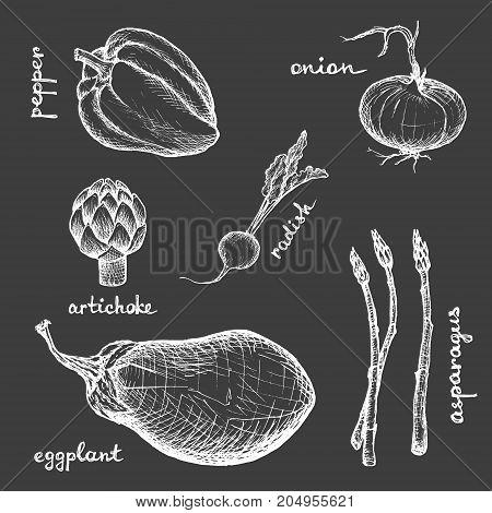 Vegan Menu - Eggplant Radish Artichoke Onion Pepper Asparagus - White hand-drawn objects