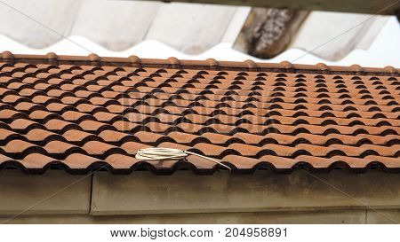 Clay tile roofing sheets has Cable TV Coil placed on the house has copy space.