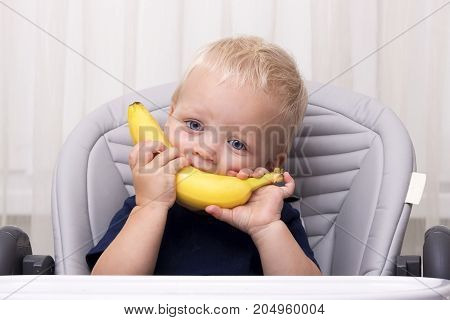 Cute one year old toddler eating a banana and sitting in the baby chair. Funny kid with banana smile.