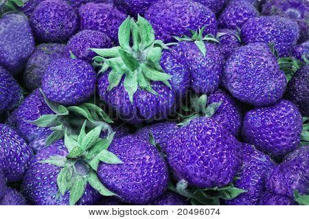 violet strawberries