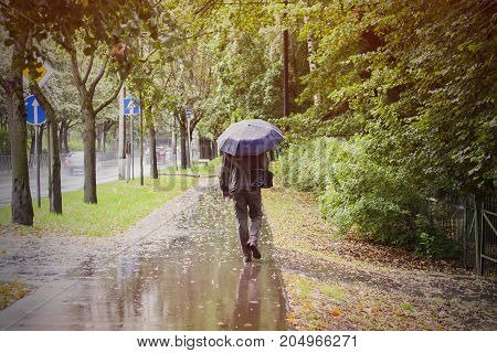 Man with umbrella walking outoor in rainy autumn weather