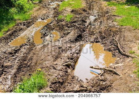 Muddy road in the forest after the rain