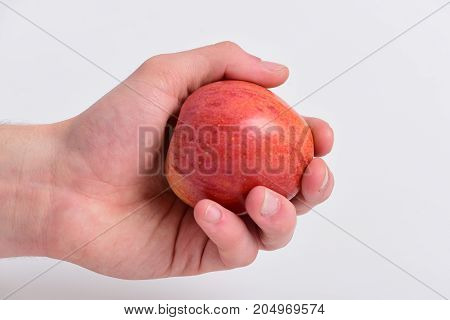 Apple Fruit On Light Grey Background. Apple In Juicy Color
