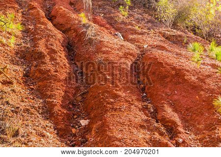Red loamy ground of the wall of Providence Canyon closeup USA