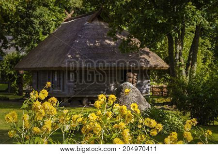 an old wooden house built of logs behind yellow flowers