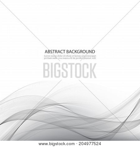 Gray vector background Abstract transparent grey waves
