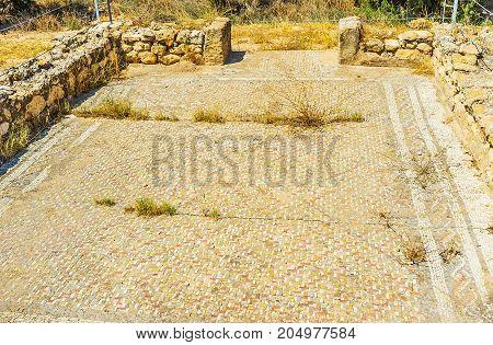 The Stone Mosaic In El Djem Museum