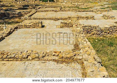 Mosaics Of El Djem