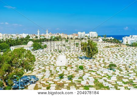 The Cemetery On The Coast Of Monastir