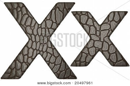 Alligator Skin Font X Lowercase And Capital Letters