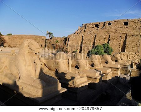 Egypt North Africa visit the Temple of Luxor Karnak