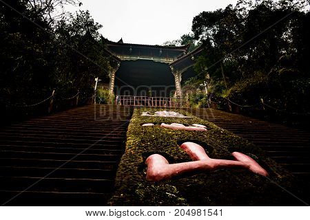 Leshan Buddha Park with chinese pagodas and  statues in Leshan, China. Top view of the Lotus Fountain