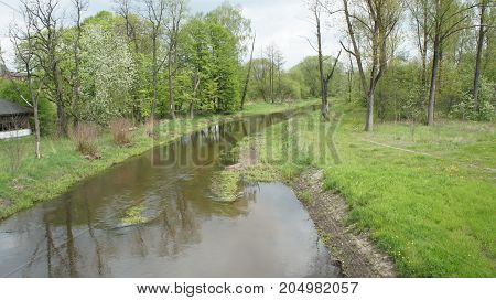 The river with trees and cloud, in Poland