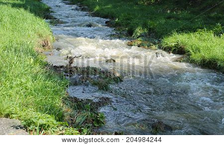 fast clean brook flowing through the meadow