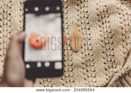 Instagram Blogging Concept. Hand Holding Phone And Taking Photo Of Pumpkin And Leaf On Warm Sweater,